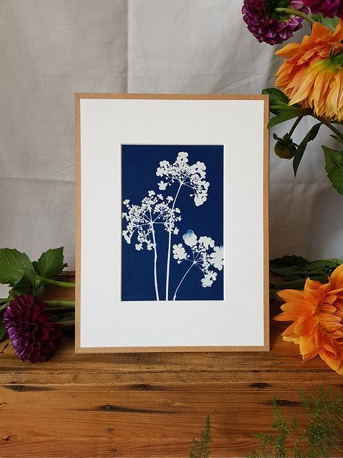 Fleurs de Sorbier - 18x24cm