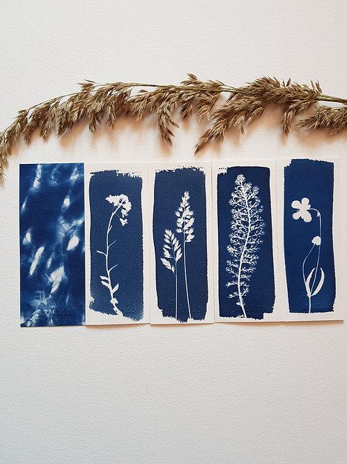 Lot de 5 marque-pages format 6x15cm - bouquet 1