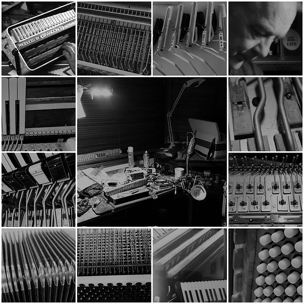 accordion repair collage.jpg