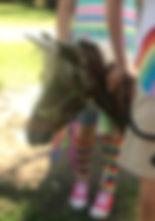 Rainbow Rider.JPG