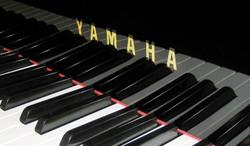 header_Yamaha