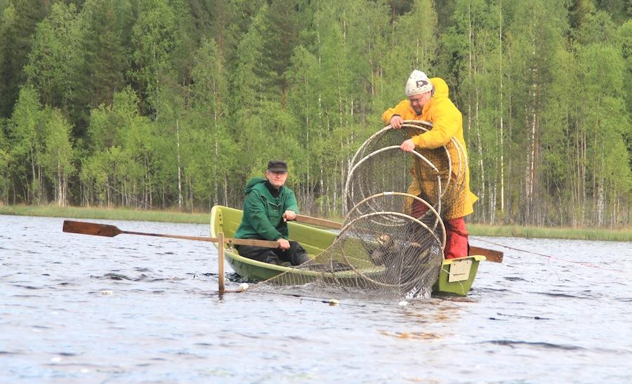fish traps.jpg