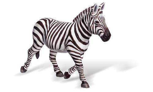 K..81) Zebra Tiptoi