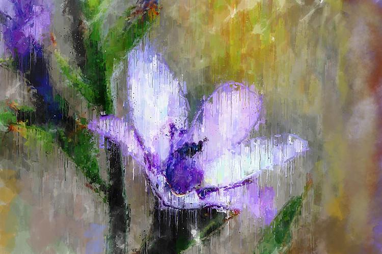 Impressive Lilac.jpg