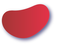 red vector -08.png
