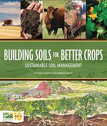 soil .png