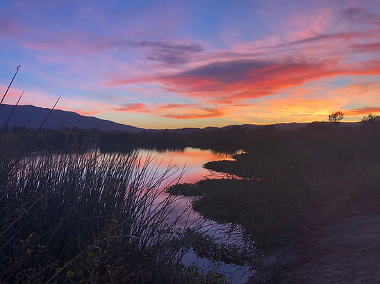 Prado Wetlands Sunset.JPG