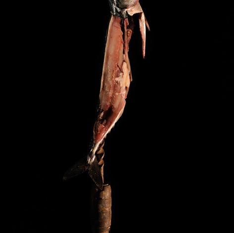Danseuse, position de quatrième devant sur la jambe gauche, première étude