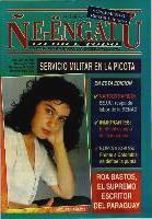 Revista Neengatu