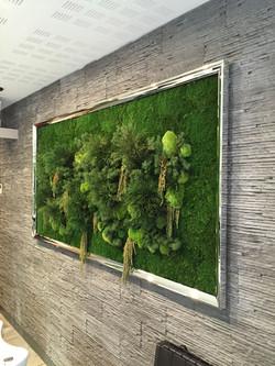 Cadre argent sur mur végétalisé