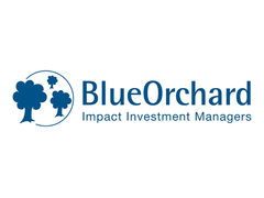Blue Orchard