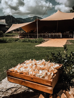 Wedding venue -confetti at the ready in Montriond