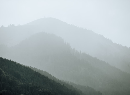 Wedding Planning in the Mountains in the face of a pandemic.