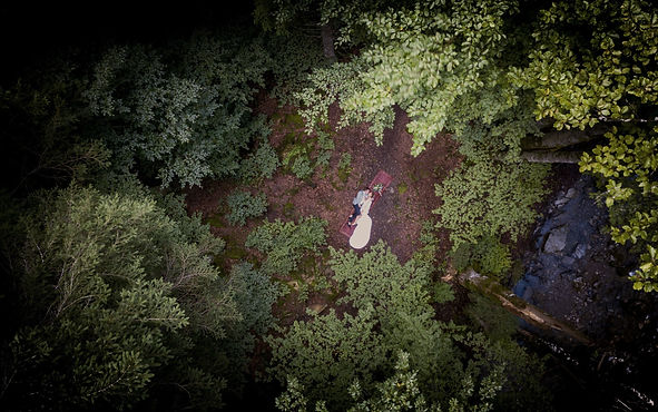 Wedding couple drone shot