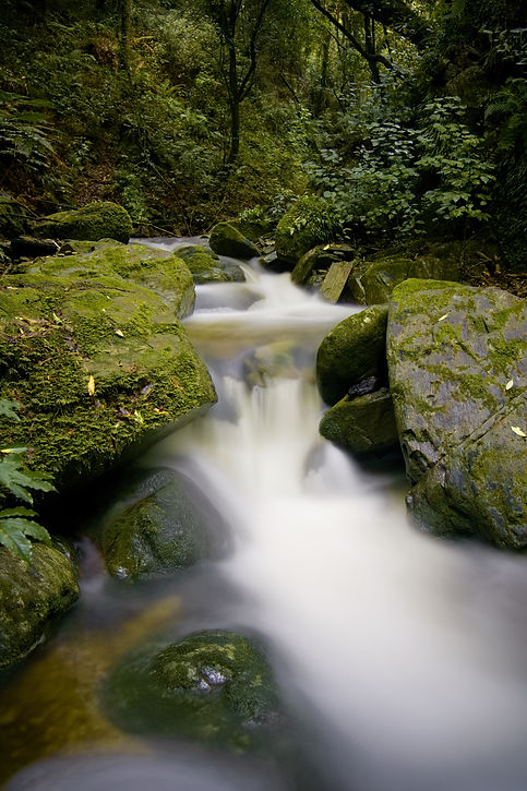 Brook waterfall.jpg