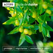 OHL_Insta_Gabarit_Actifs_Jojoba.jpg
