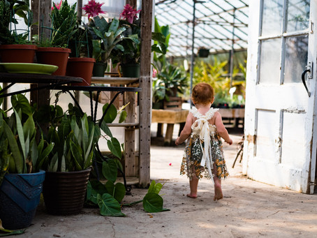 Traveling Dress Greenhouse Session - Chester County PA