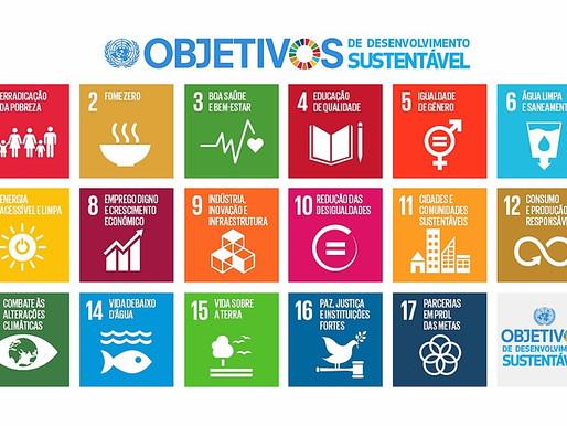 Diário de Bordo Aula #5 | Curso YCL Brasil 2020: ODS e clima
