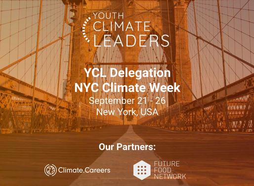 Journaling #YCLNYC2019 Delegation