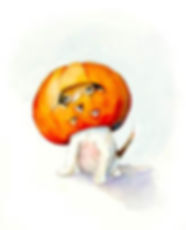 pumpkin dog 4 72 dpi.jpg