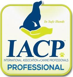 iacpm-professional-logo600x600-web_edite