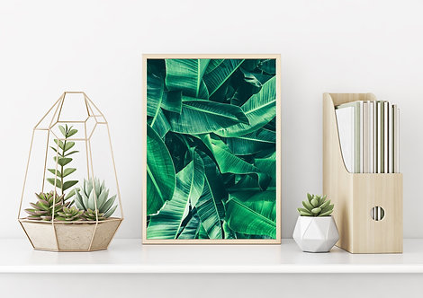 Peace, Tropical Plants, Monstera Poster   Print Poster Bedroom Quote Wall-art Gi