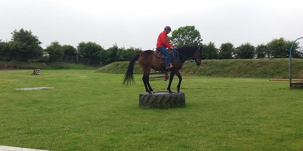 Natural Horsemanship Day
