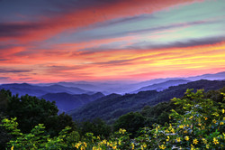 Blue Ridge Mountain Color by Carol R Montoya Fine Art Photography