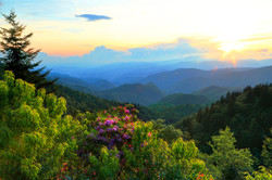 Blue Ridge Parkway Sunset and Rhododendrons Carol R Montoya Fine Art America