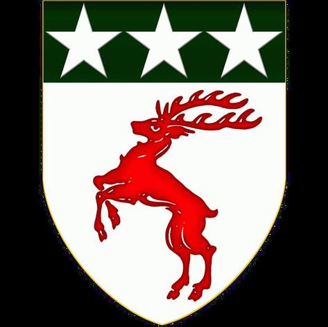 Transparent Logo (square).png
