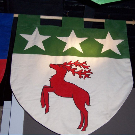 Arms (Flag at Tower Museum).JPG