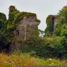 Northburgh Castle2.jpg