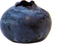 BLUEBERRY 2.png