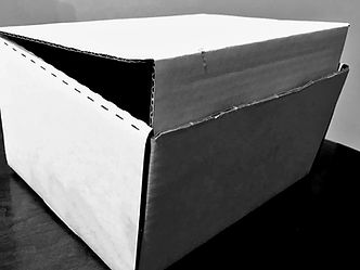 Basic Carboard Remains Container
