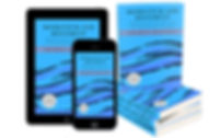 Mock-up_Momentum and Movement eBook.jpg