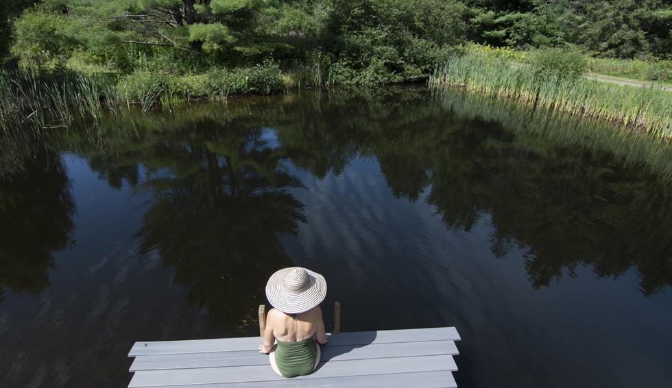 Pond and dock