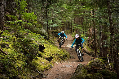 Mountain biking on the Revolution trail