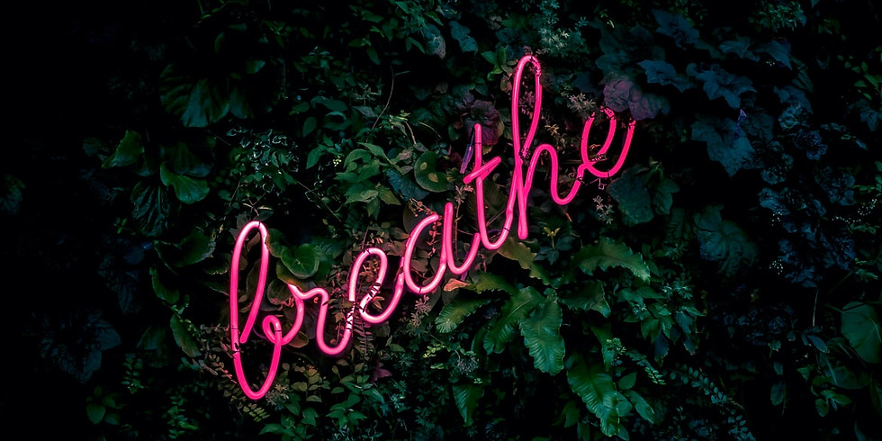 Channeled Meditation wt Vagrein : Breath is the Connection