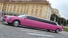 Limousinen Strip buchen