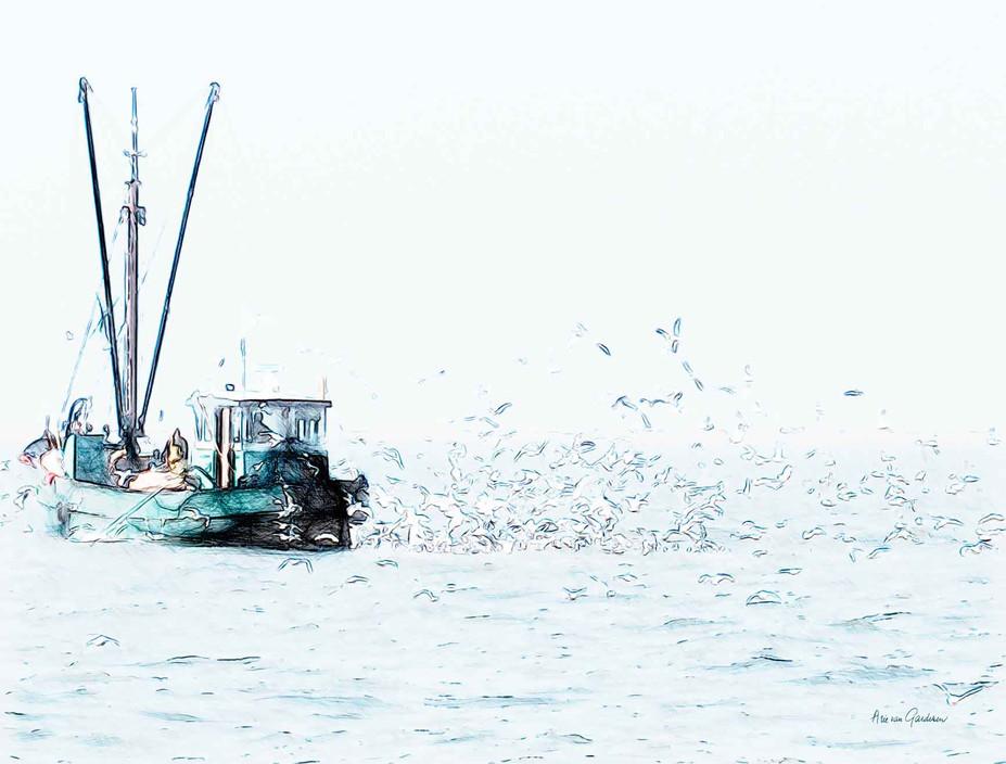 Vogelvisser