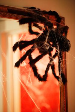 spider props halloween
