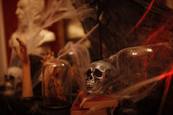 skulls props for hire