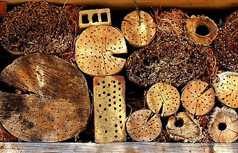 insect-hotel-2421136__480.jpg