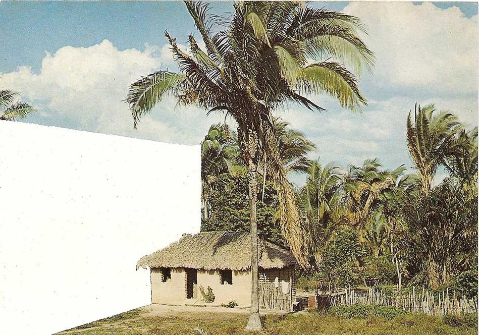 S2-Nordeste.jpg