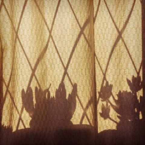 Flores sobre cortina