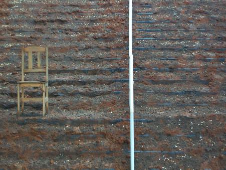 Um jardim para Beuys Terra, semente e cadeira de madeira sobre escada. Salão de Itajaí, Itajaí. Santa Catarina 2010