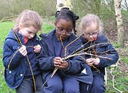 weaving willow at the Nature Reserve.jpg