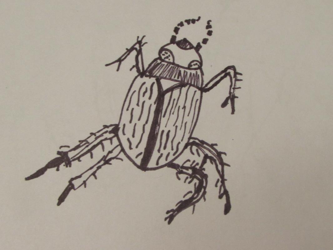 Water Beetle by Drewmatik