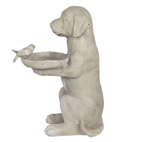 """Hund """"David"""" mit Vogeltränke"""