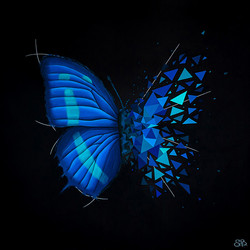 Sabrina Beretta, acrylique sur toile, Effet papillon